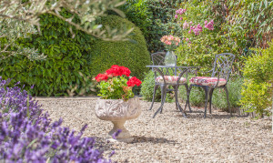 beautiful spa garden in the sun with flowers at ladies only spa